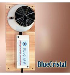 Chauffage céramique pour poulailler avec thermostat 100 W