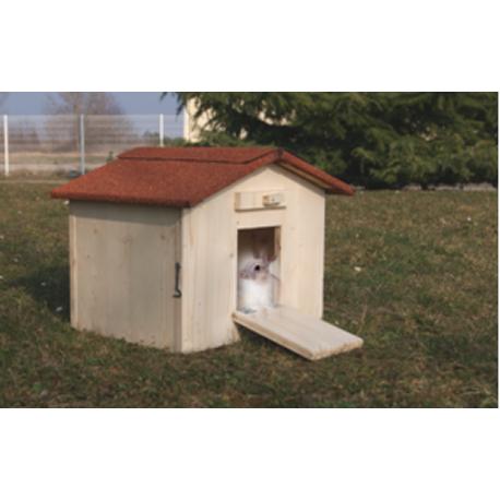 Cabane à lapin